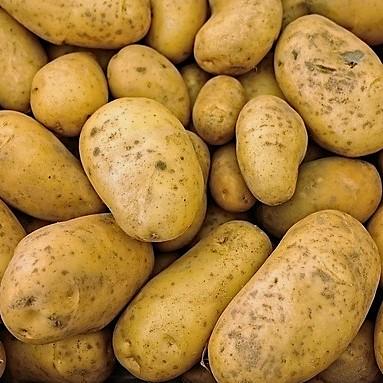 patata ecológica online
