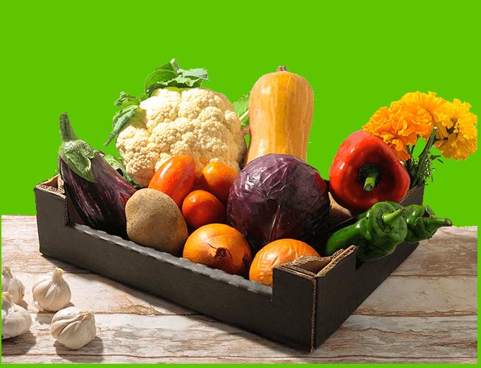 cesta de verdura ecológica somnatur