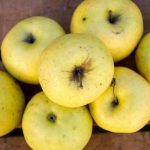 manzana golden ecologica