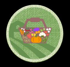 cestas ecologicas somnatur